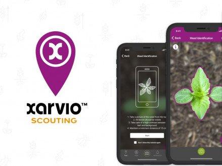Платформа xarvio™ BASF визнана найкращою інновацією