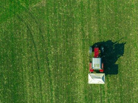 Что такое азотные удобрения: виды, правила использования, норма внесения