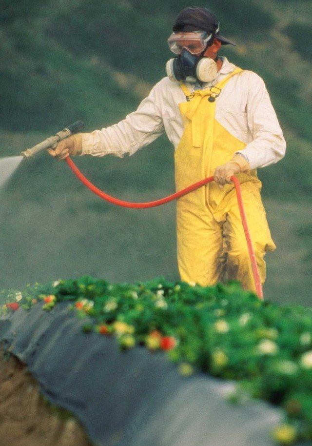 Купити засоби захисту рослин